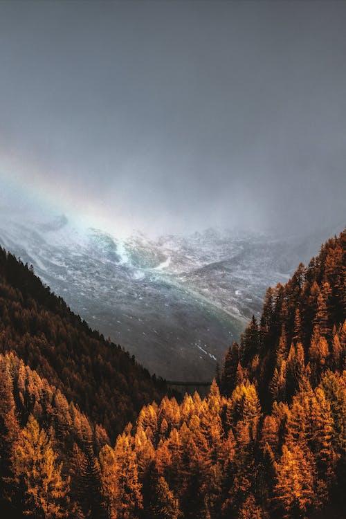 Základová fotografie zdarma na téma duha, fotka zvysokého úhlu, hora, krajina