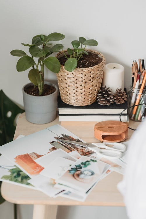 From above of different images placed with scissors on wooden table near potted plants books and pencils in glass jar