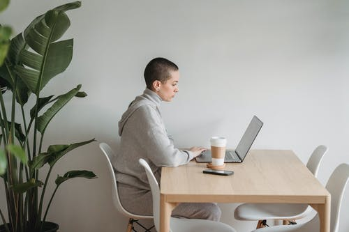 Concentrated woman working on laptop in living room