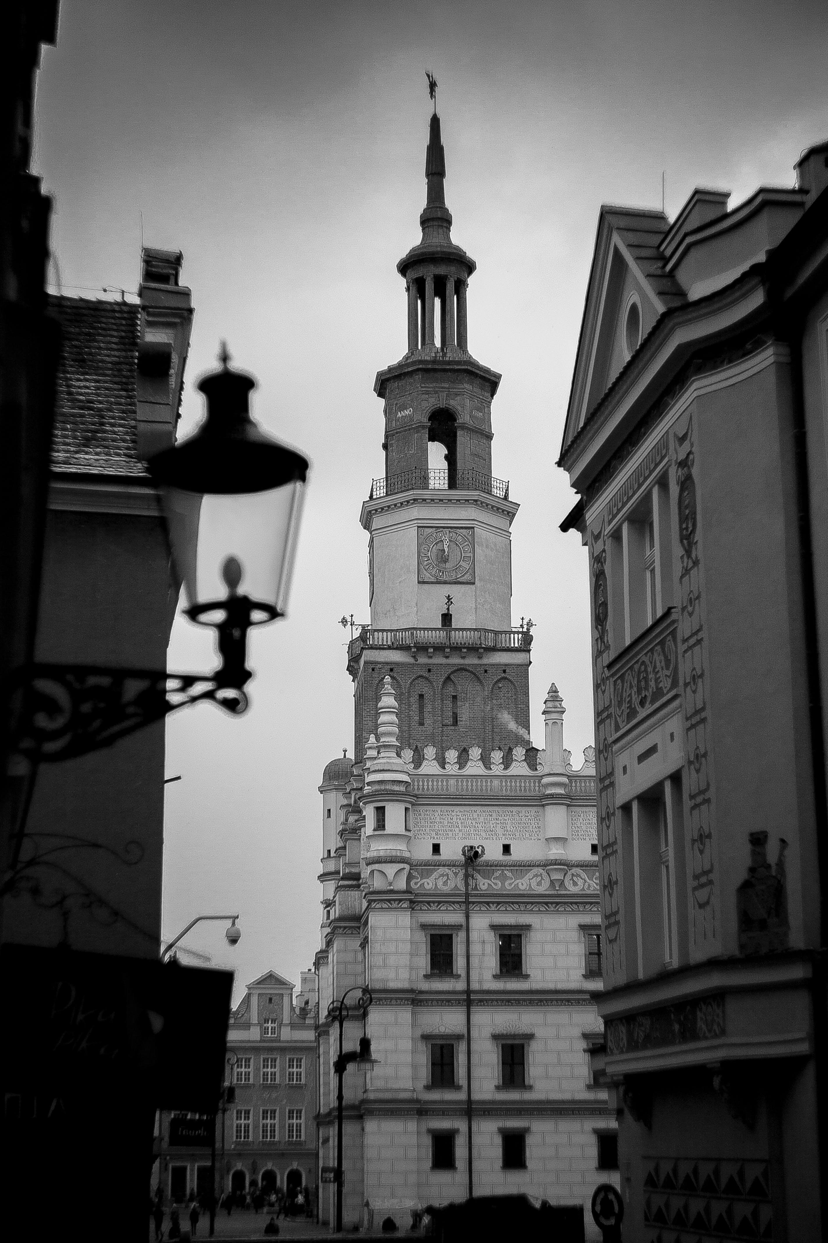Darmowe zdjęcie z galerii z architektura, budynki, czarno-biały, gotycki