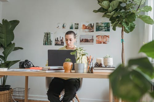 Pensive female photographer browsing netbook while sitting at wooden table with photo camera in light room with potted green plants