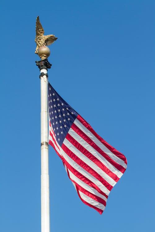 Základová fotografie zdarma na téma transparent, USA, vertikální záběr