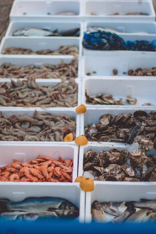 Set of plastic containers with different seafood places in rows on stall of market