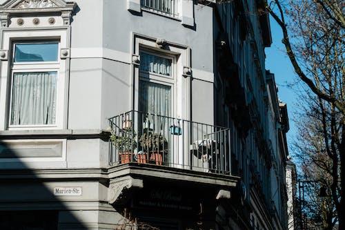 Immagine gratuita di architettura, articoli di vetro, balcone