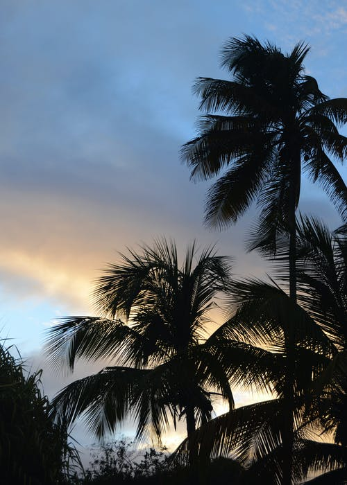 Free stock photo of caribbean, sky, sunset