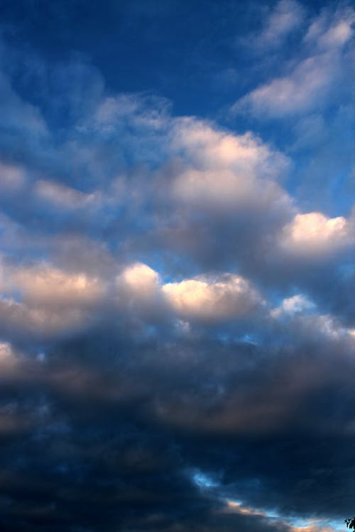 Free stock photo of cloud, clouds, rainy day