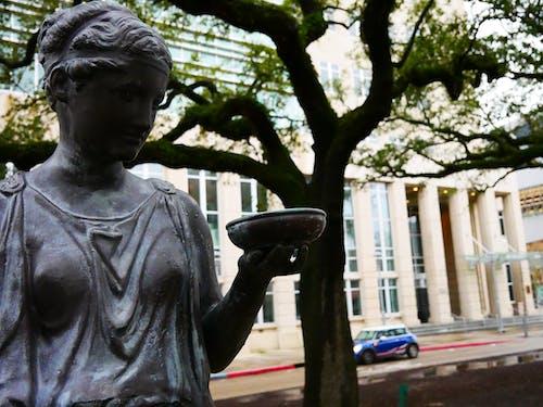 古典, 希腊雕像, 藝術 的 免费素材图片