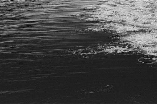 Бесплатное стоковое фото с 35 мм пленка, minolta, portra 400