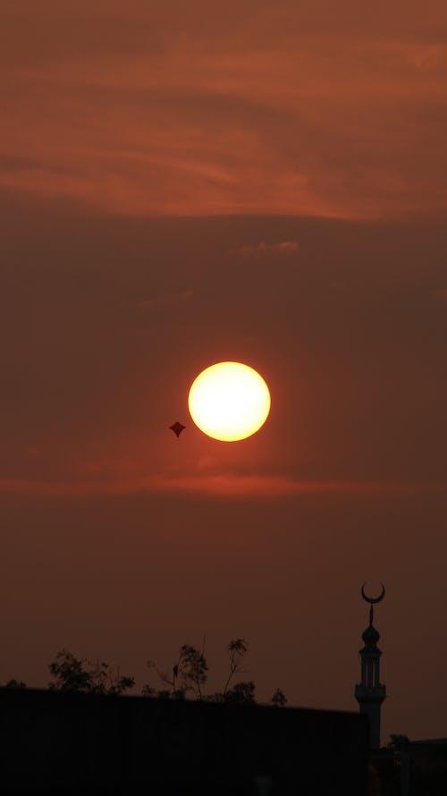 Free stock photo of kite, sky, sun