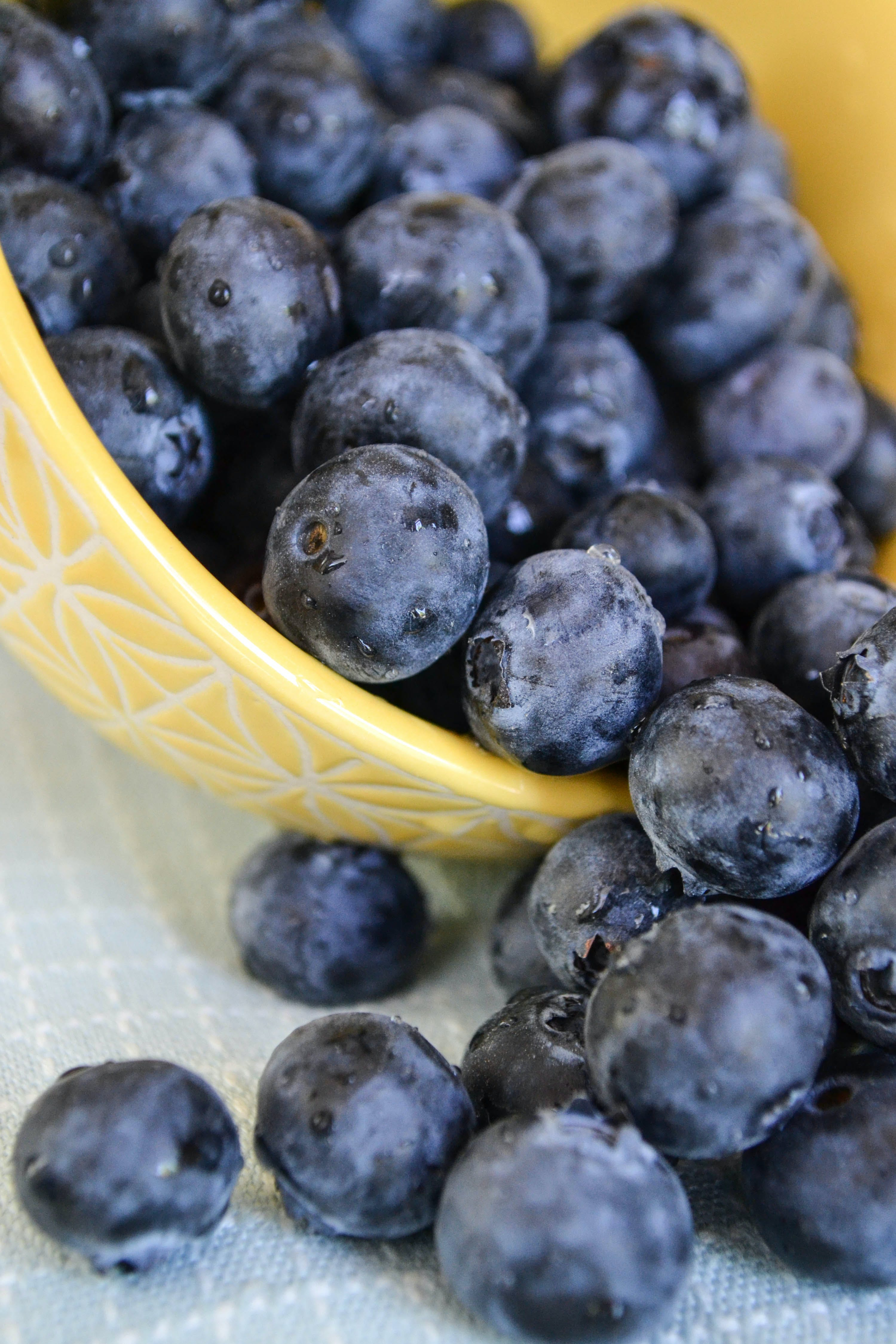 Free stock photo of food, healthy, fruits, blueberries