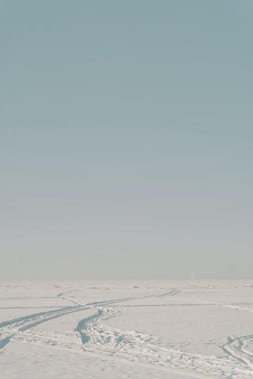 Kostenloses Stock Foto zu antarktika, antarktis, arktis