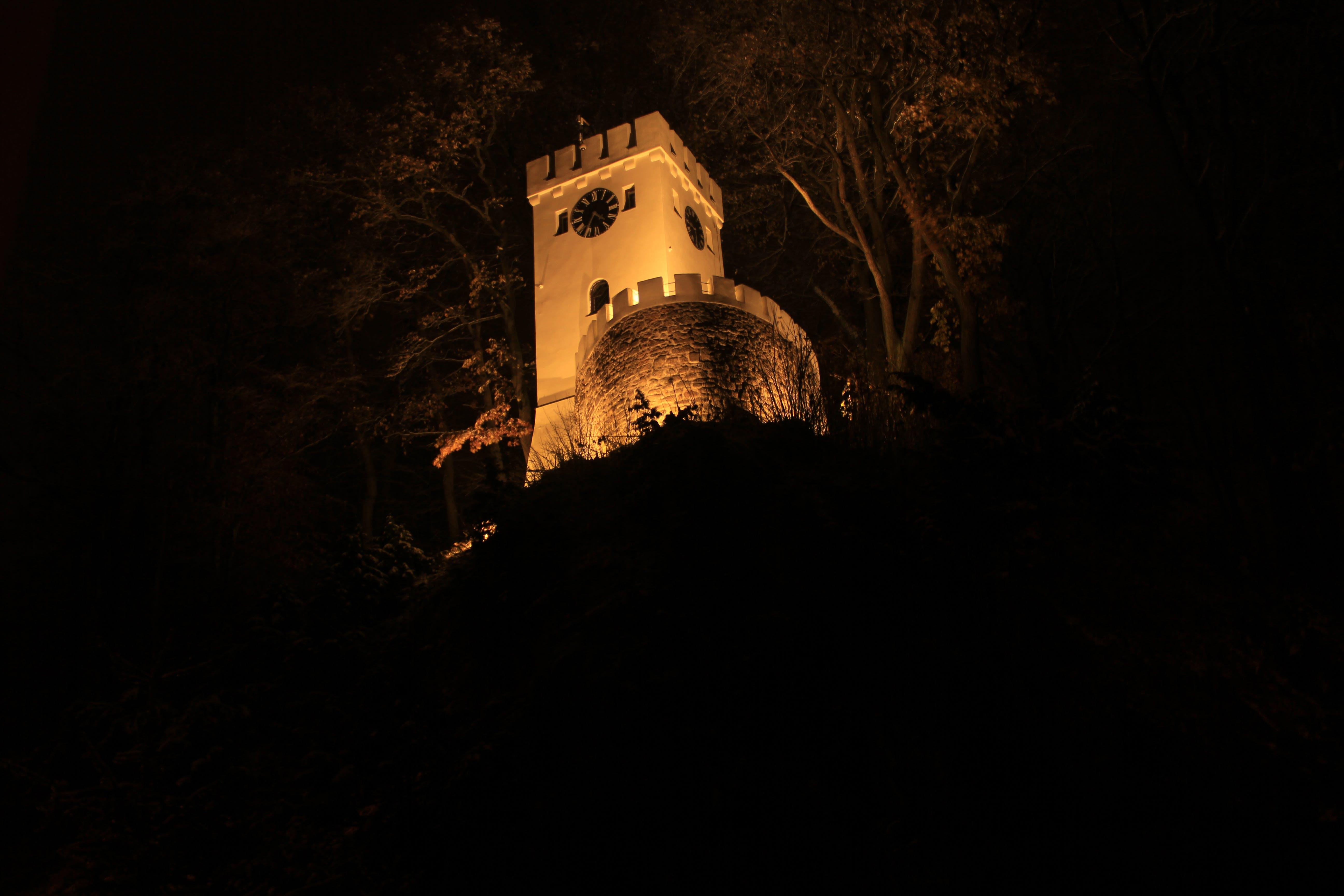 Free stock photo of clock, night, tower, tree