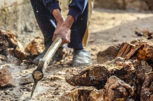 Kostnadsfri bild av bark, hackad, hackat trä, hand