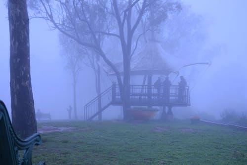 Free stock photo of desktop backgrounds, foggy, HD wallpaper, hillside