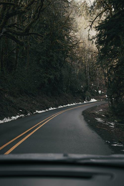 交通系統, 俄勒岡州, 健行 的 免費圖庫相片