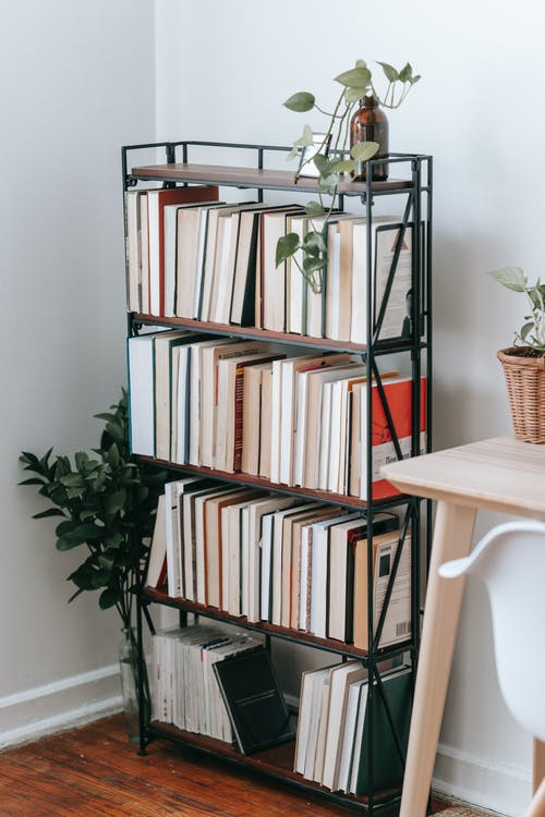 Collection of various books on shelves of bookcase placed near table and chair in light room decorated with green plants