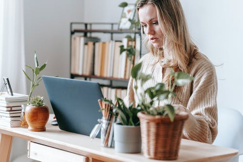 Crop focused female remote worker surfing internet on netbook at table with potted plants in light house room