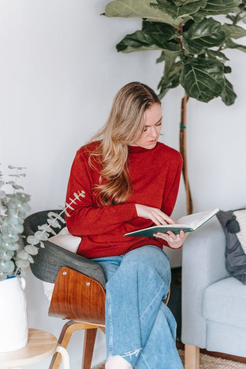 Concentrated young female with long blond hair in stylish outfit reading interesting book while sitting on comfortable chair near sofa in light apartment decorated with various potted plants