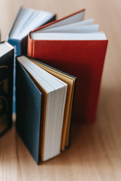 Foto stok gratis baca, belajar, beragam