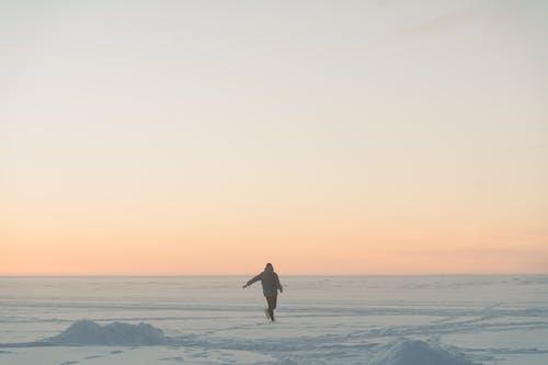 copyspace, 감기, 겨울의 무료 스톡 사진