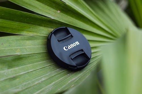 Gratis stockfoto met camera, camera-apparatuur, cameralens, cameralenzen