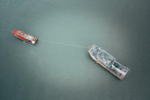 Immagine gratuita di acqua, banca, barca