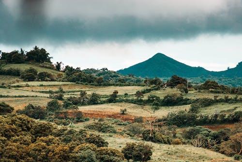 Photos gratuites de beau paysage, belle nature, calabarzon