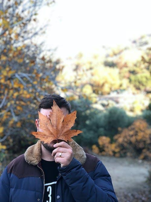 Δωρεάν στοκ φωτογραφιών με άνθρωπος, άτομο