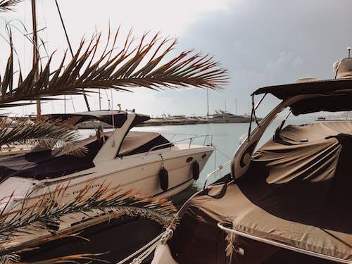 Fotos de stock gratuitas de barca, mar, mar negro