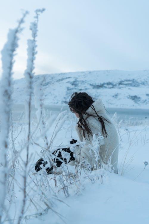 Immagine gratuita di congelando, coperto di neve, donna