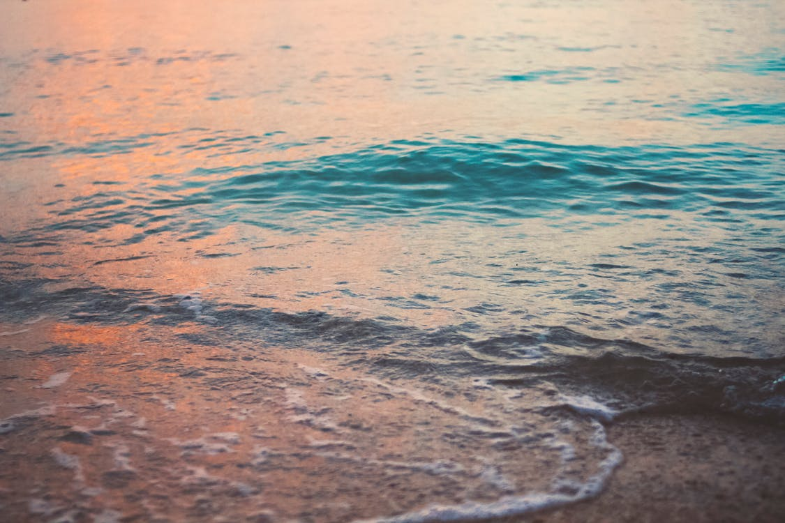 берег, вечернее солнце, вода