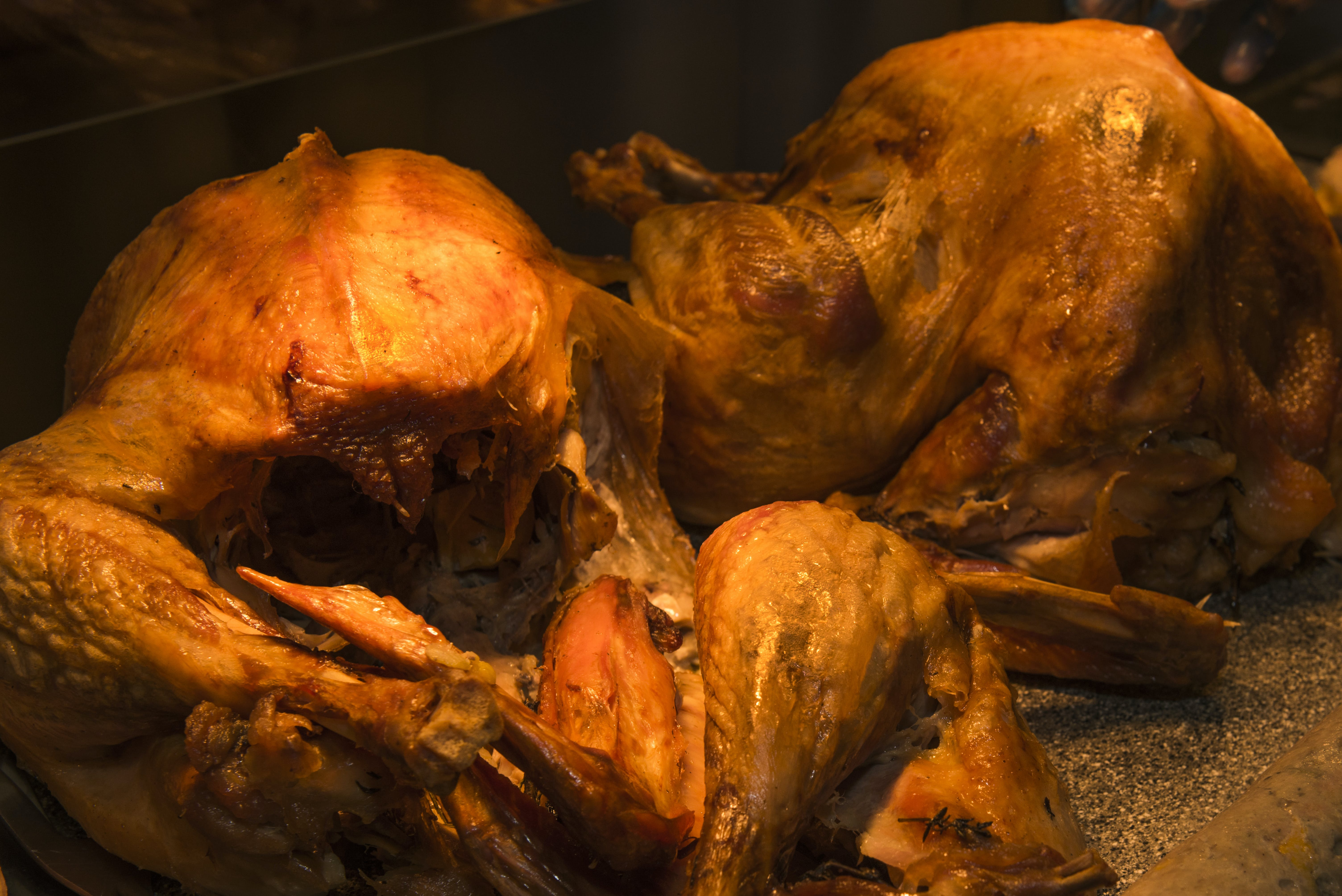 Free stock photo of cooked turkey, oven baked turkey, poultry, Thanksgiving