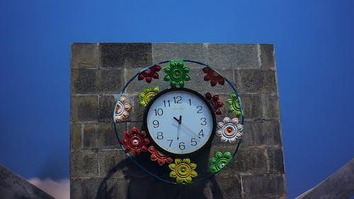 Fotos de stock gratuitas de azul, cielo, flor, paisaje
