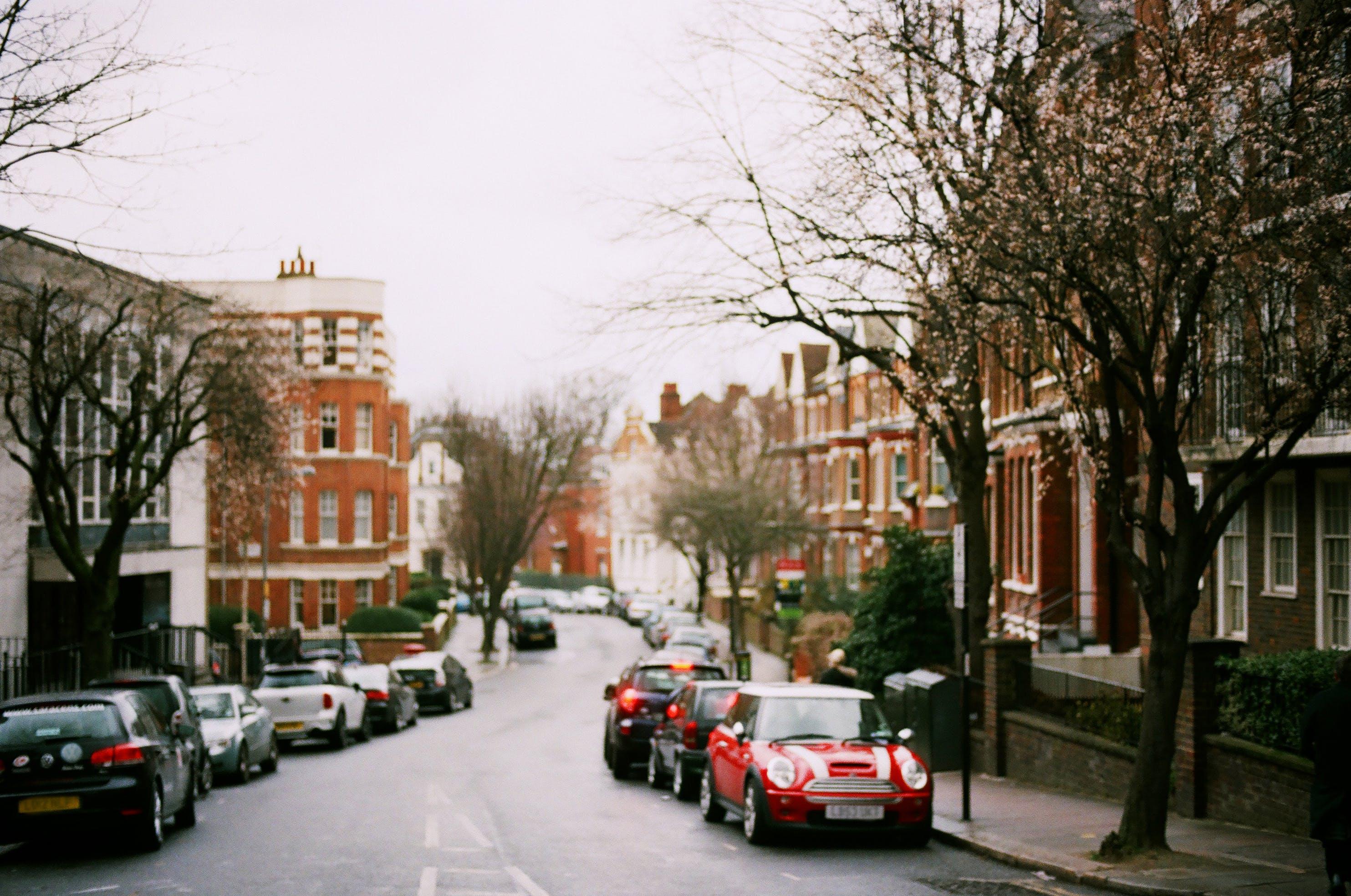 Foto d'estoc gratuïta de arbres, arquitectura, automòbils, carrer