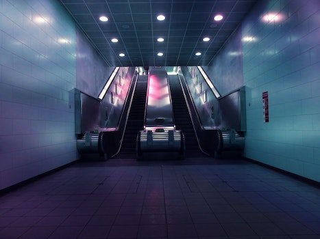 Landscape Photo of Two Escalators