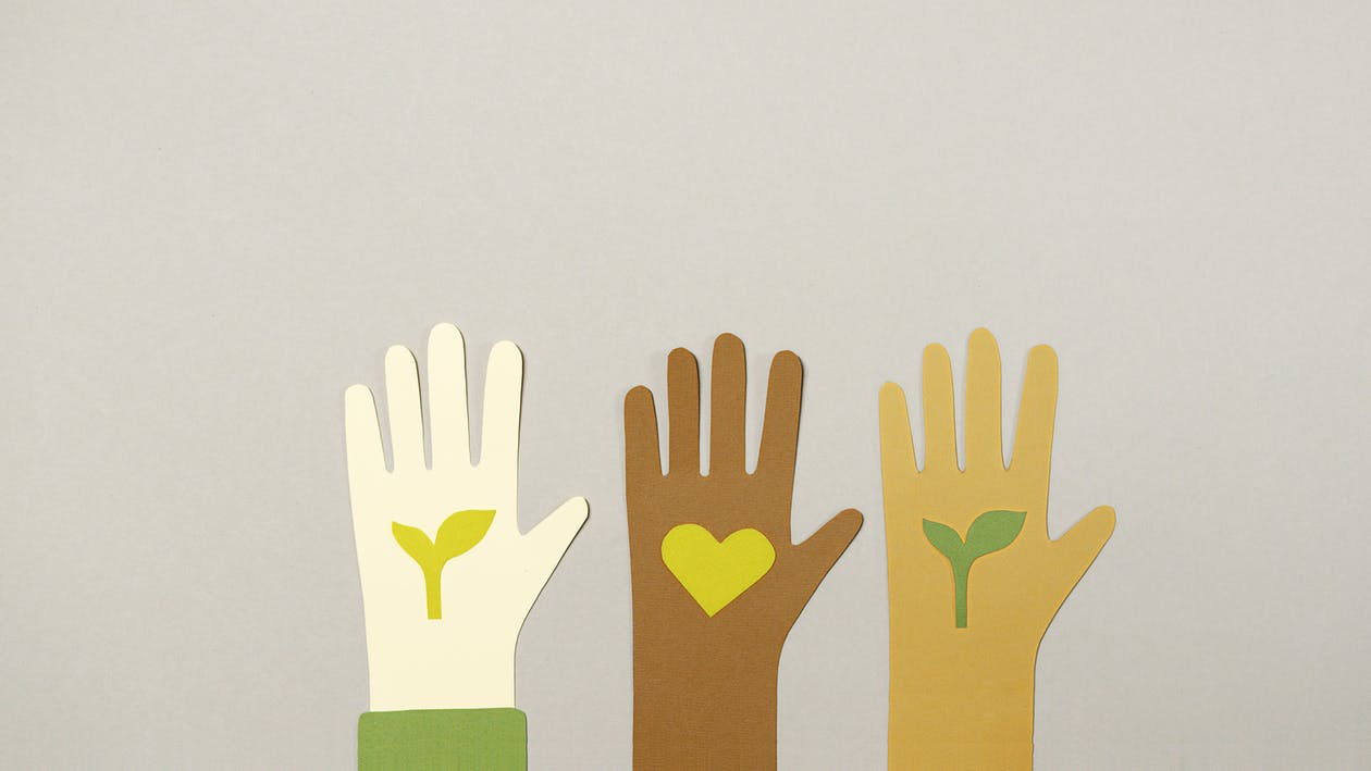 Green and Brown Human Hand Illustration