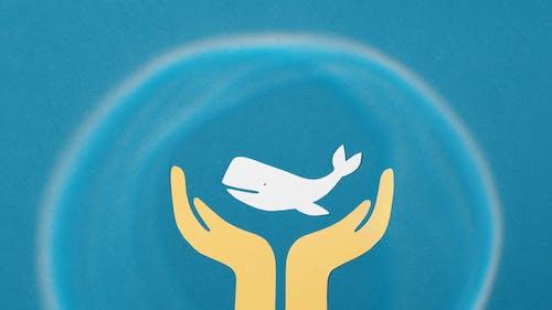 Ilmainen kuvapankkikuva tunnisteilla kädet, kampanja, käsitteellinen