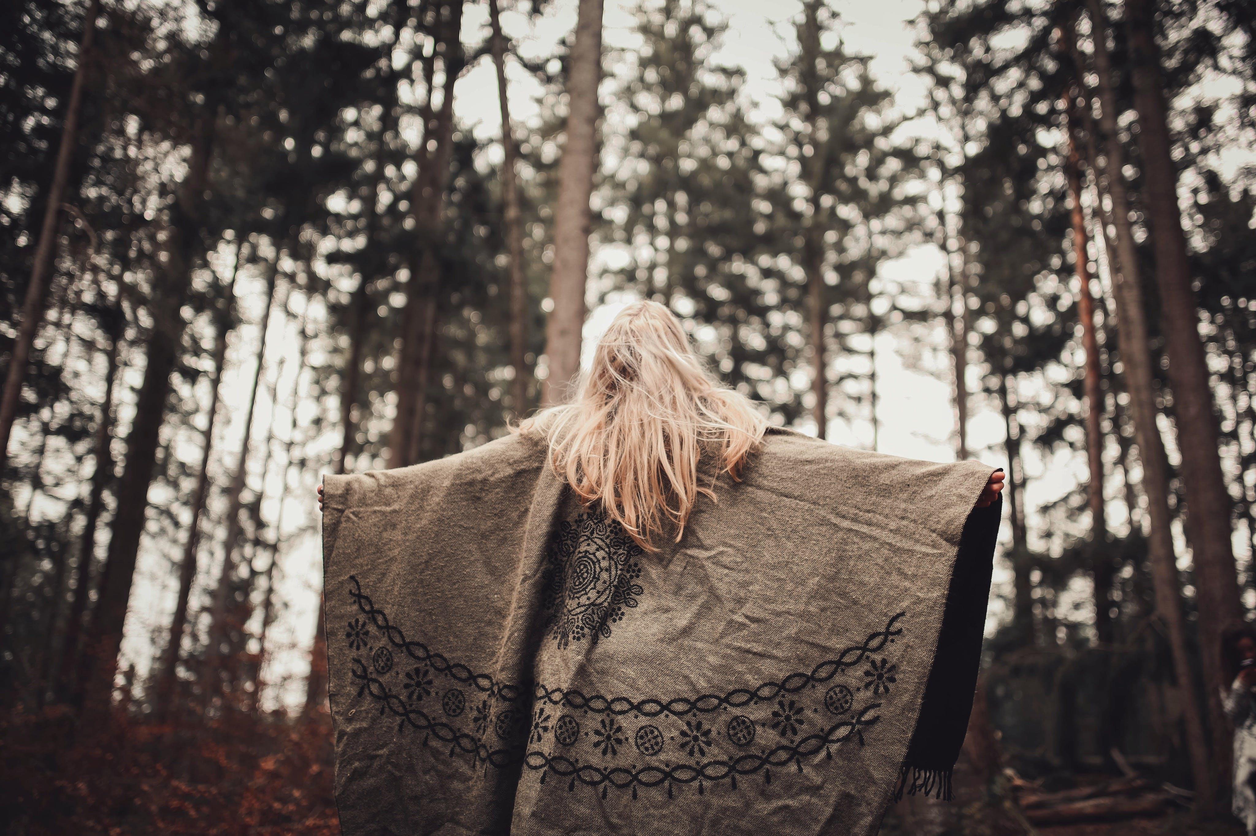Kostnadsfri bild av blont hår, dagsljus, gryning, kvinna