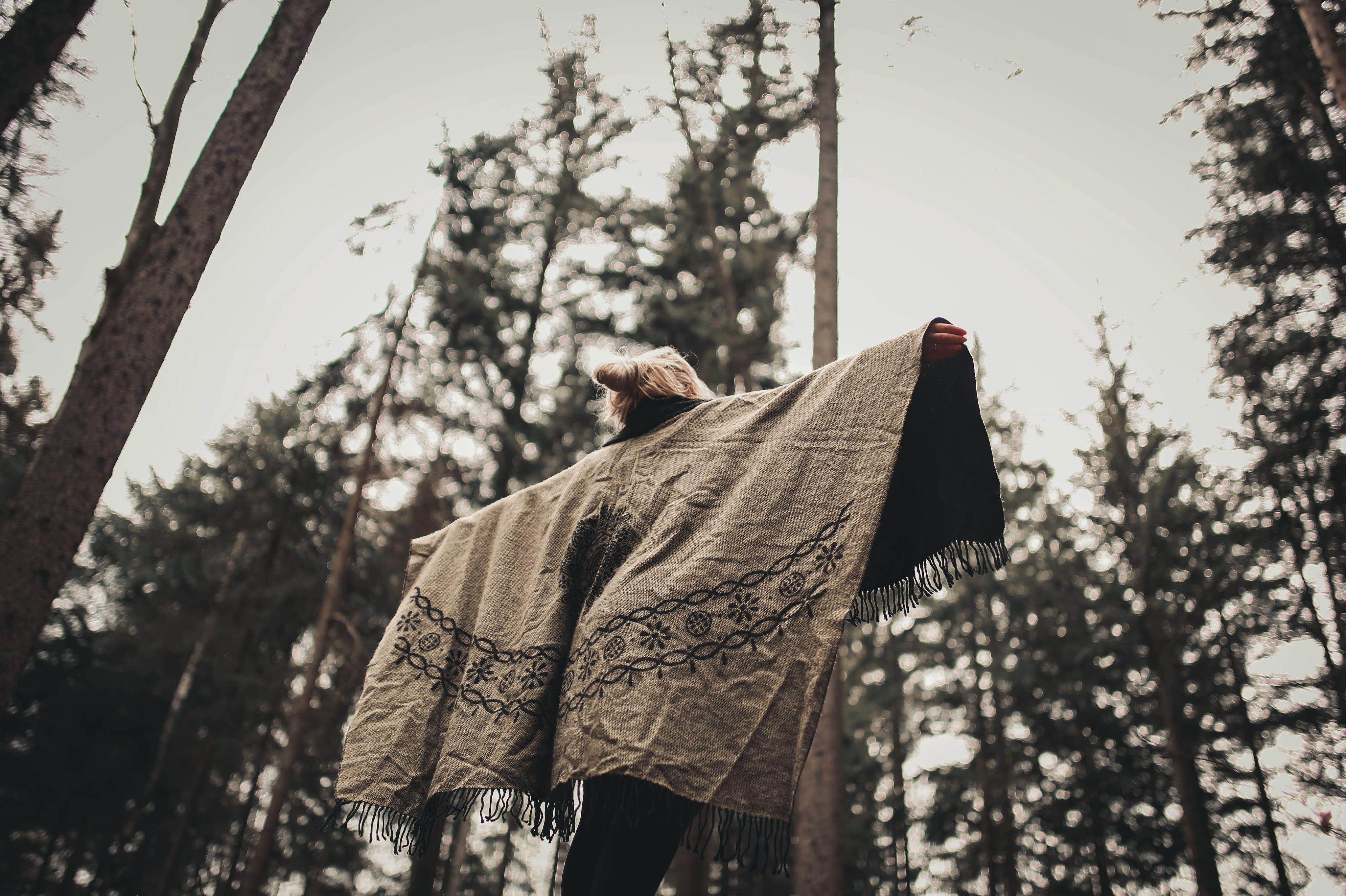 Základová fotografie zdarma na téma dospělý, dřevo, krajina, les