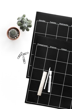 Green Succulent Plant Beside Black Planner