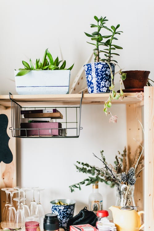 Ingyenes stockfotó beltéri, bútor, cserepek, design témában