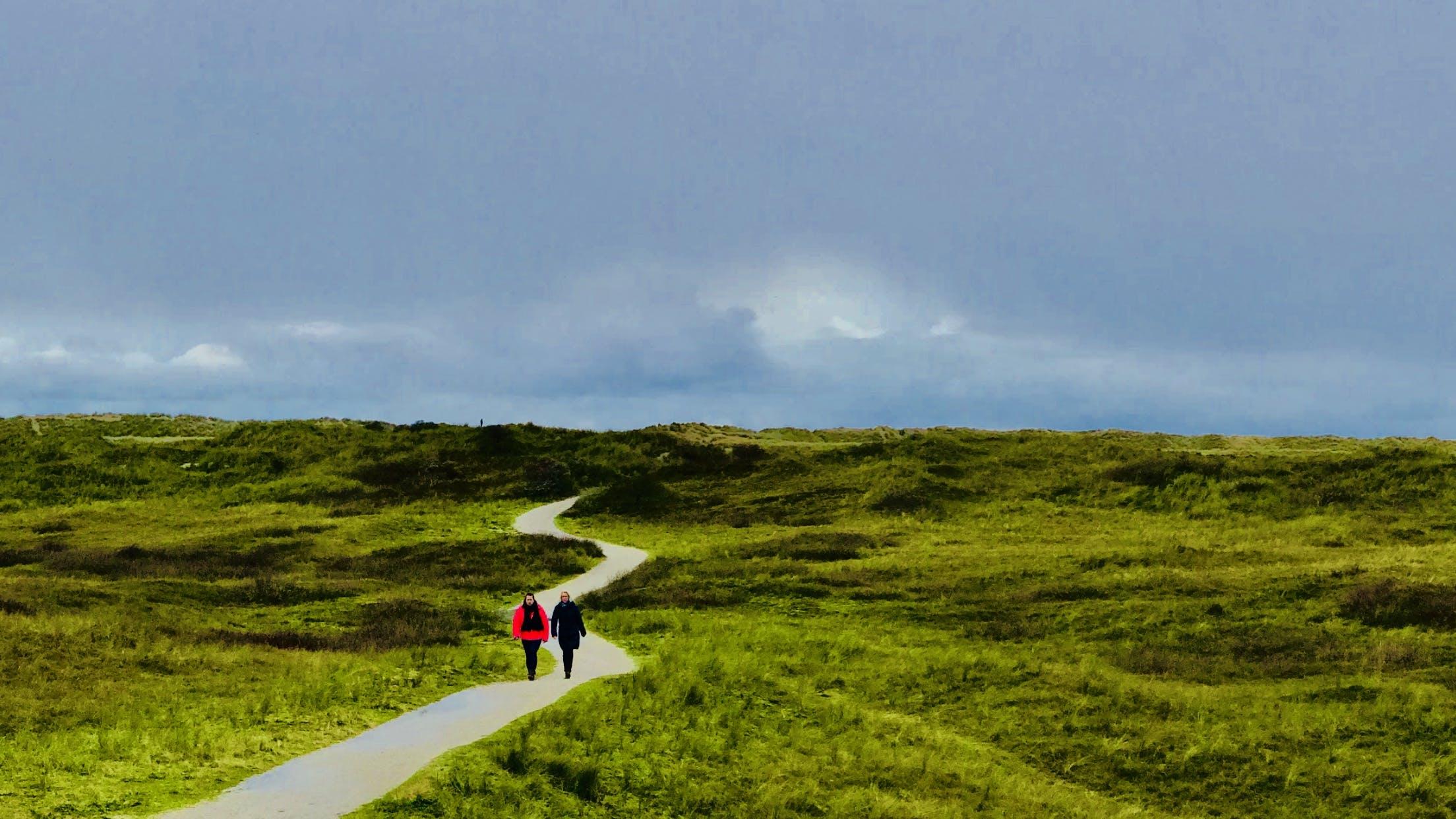 アメランド, オランダ, フィールド, 小径の無料の写真素材