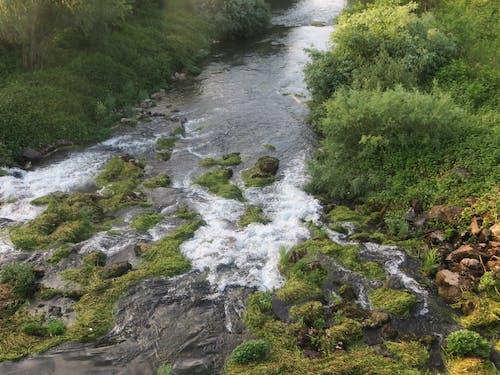 Immagine gratuita di cascata