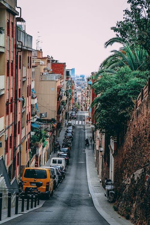 Road Between Buildings