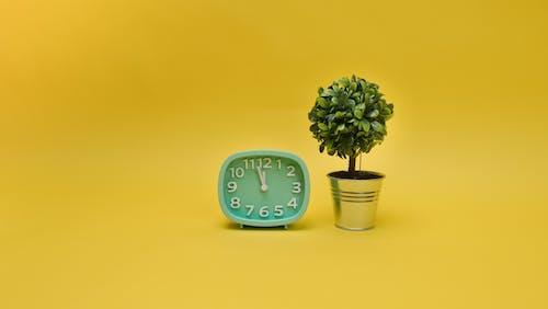 Free stock photo of alarm clock, ball-shaped, blur