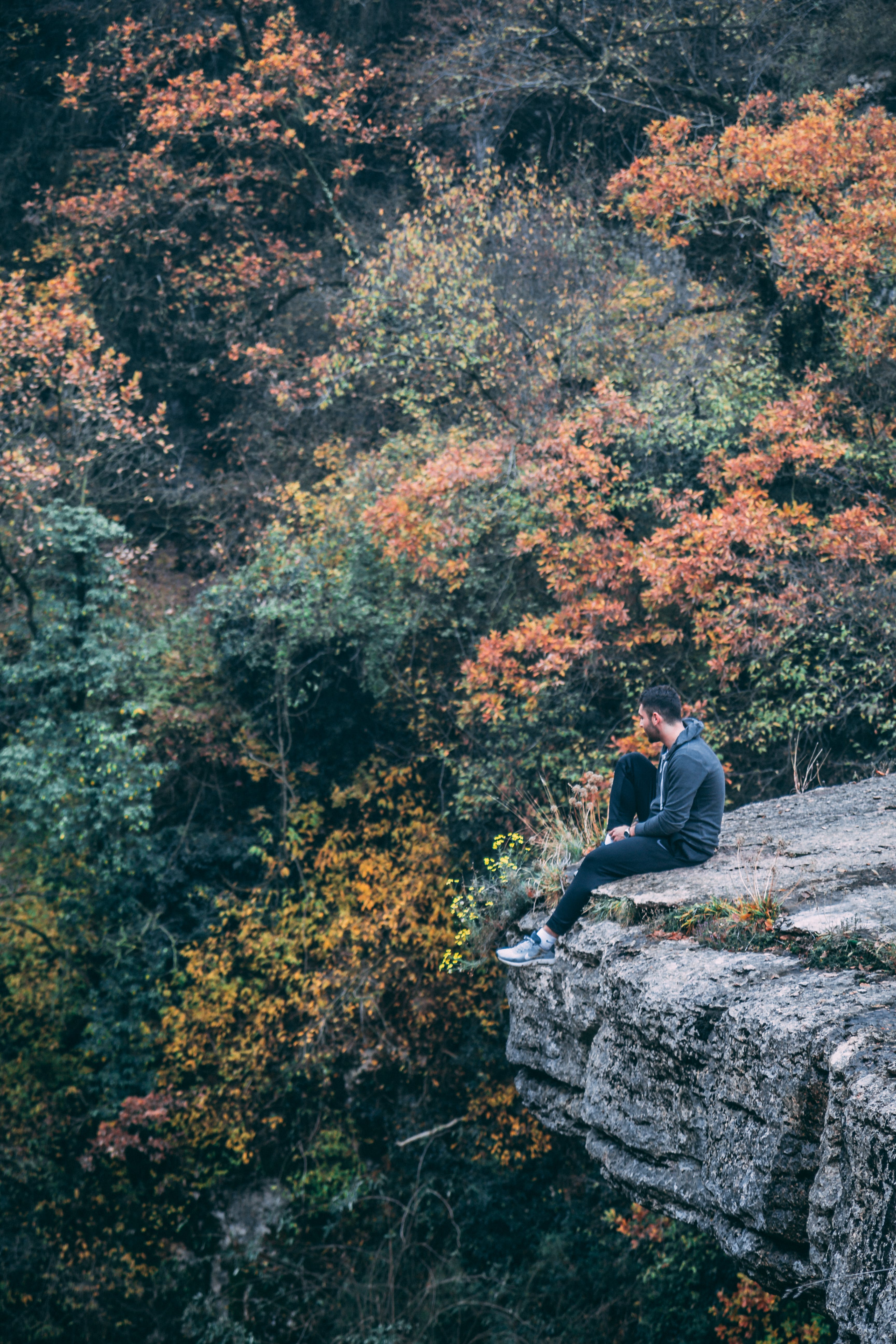 Kostenloses Stock Foto zu bäume, entspannung, erholung, erwachsener