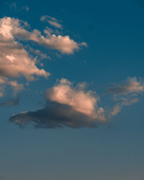 Základová fotografie zdarma na téma atmosféra, lehký, léto