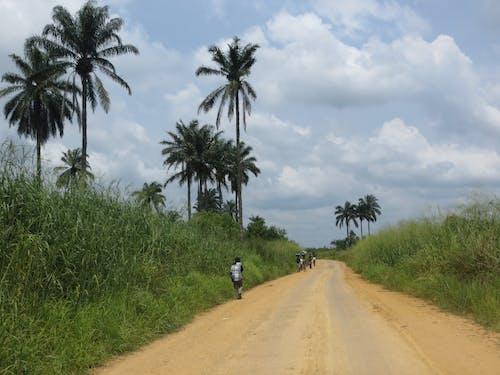 Immagine gratuita di repubblica democratica del congo