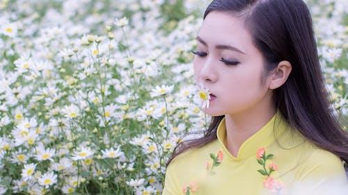 Foto d'estoc gratuïta de asiàtica, bonic, brillant, camamilla
