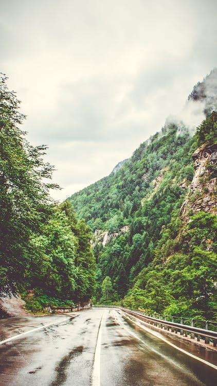 cesta, cestovní ruch, dálnice